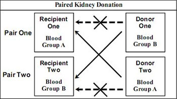 Indian Renal Foundation